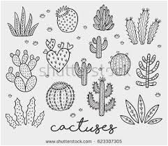 Desert Plants Coloring Pages Beautiful Zentangle Immagini Stock