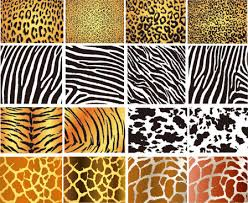 Leopard Pattern Interesting Leopard Free Vector Download 48 Free Vector For Commercial Use