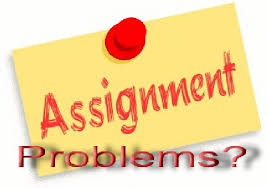 quality assignment help services in united kingdom information assignment help services