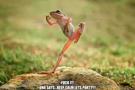 dancing frog memes | quickmeme via Relatably.com