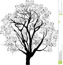Tree Black Sketch Isolated On White Stock Vector Illustration Of