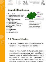 Unidad 5 Expo Respiracion Vegetal | Cadena de transporte de electrones |  Ciclo del ácido cítrico
