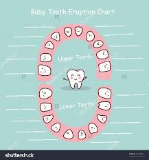 Teething Chart Babies 38 Printable Baby Teeth Charts Timelines Template Lab
