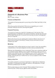 Organizational Plan Business Example Plans Chart Sample