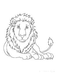 Wild Animals Colouring Pages Zensolosentarseorg