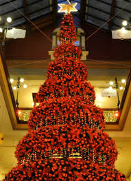 most beautiful christmas tree. Contemporary Christmas Sydneyu0027s Historic Strand Arcade Featured A Tree That Held 2000 Baubles  1000 Fairy Lights And In Most Beautiful Christmas Tree T