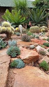 Small Picture Best 25 Cacti garden ideas on Pinterest Outdoor cactus garden