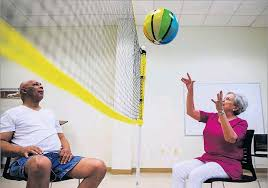 chair volleyball net. ashley landis/staff photographer. in chair volleyball net y