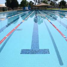 Swimming pool lane lines background Swim Team Image Of Swimming Pool Lane Lines Background Ropes Ropes Daksh An Underwater View Of The Shutterstock Swimming Pool Lane Lines Background Ropes Ropes Daksh An Underwater