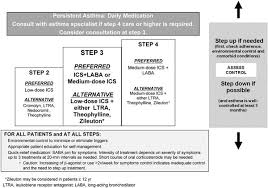 Epr 3 Stepwise Approach For Managing Asthma In Patients 5