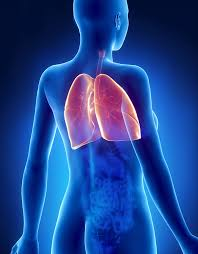 sharp pain in chest. back and chest pain including lung - connections, symptoms treatment sharp in