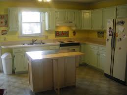 50s Kitchen Maple Leaves Sycamore Trees Kitchen Reveal
