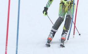 Erickson qualifies for state Alpine ski meet | RiverTowns