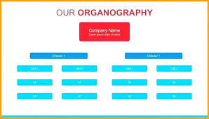 Powerpoint Hierarchy Templates Corporate Hierarchy Chart Template Free Organizational Chart