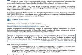 Resumes Executive Resume Writing Service Writers Template Word