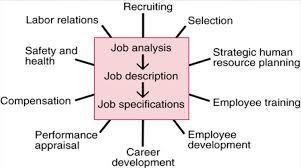 vorlesung economics human resource management at martin image bildschirmfoto 2015 09 15 um 173836 for definition side of card