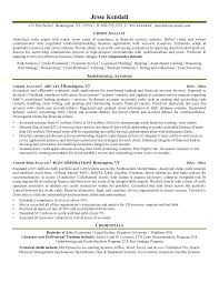 Business Analyst Resume Summary Examples Business Analyst Resume Summary Functional Resume Sample Business 95
