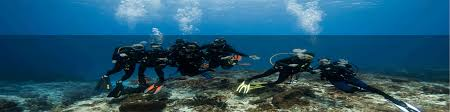 Real underwater world Unbelievable Understand First The Real Safety Issue Of The Underwater World Shutterstock Opting For Scuba Diving Understand First The Real Safety Issue Of