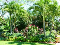 Small Picture 453 best Florida Garden images on Pinterest Garden ideas