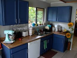 Of Blue Kitchens Blue And Yellow Kitchen Ideas