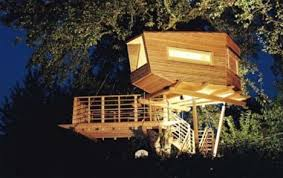 Modern Tree Living  Creative Treehouse Designs  amp  Plans