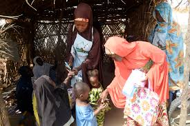 integrated campaign tackles malaria and polio in north  polio vaccinators in borno state ia