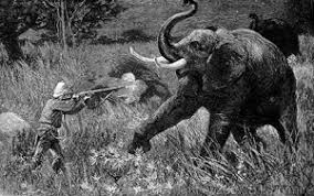george orwell s shooting an elephant imperialism shooting an elephant orwell s