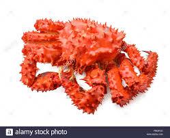 King Crab Pot Design Crab Kamchatka Stock Photos Crab Kamchatka Stock Images