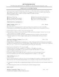 Sample Loan Officer Resume Pohlazeniduse