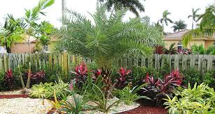 Florida Landscape Design Photos Silvera Landscaping Inc