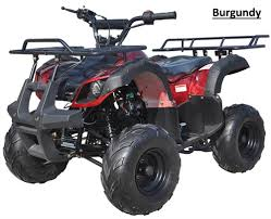 bear 125cc youth quad atv automatic with reverse remote kill 16