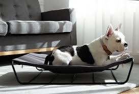 modern pet furniture. Modern Dog Beds And Accessories From HOWLPOT Pet Furniture E