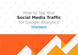 How to Tag Your Social Media Traffic for Google Analytics @DreamGrow ...