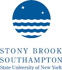 Stony brook essay