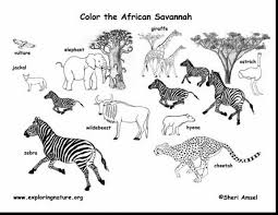 astonishing africa map coloring page with africa coloring pages ...