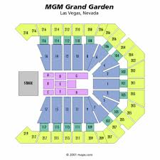 Mgm Grand Vegas Seating Chart Concert Review My Encounter With Las Vegas And Paul