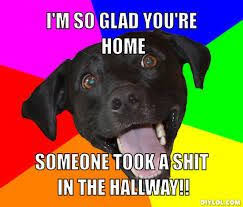 i'm glad meme - Google Search | Random Meme's | Pinterest via Relatably.com