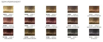38 Specific Clairol Professional Radiance Color Chart