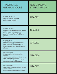 Grading Chart Gleason Score Prostate Conditions