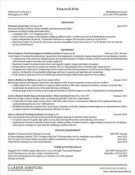 Absolutely Free Resume Templates Magnificent Absolutely Free Resume Templates Design Templates