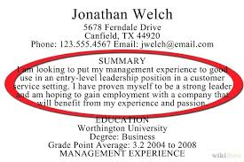 Resume Summary Examples Unique Summary Examples For Resume How To Write Resume Summary Examples