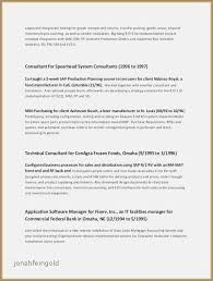 College Grad Resume Examples Cool Resume Summary College Student New Resume Summary Examples For