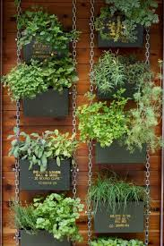 Small Picture 65 best Vertical garden images on Pinterest Vertical gardens