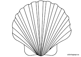 Small Picture Sea Shell Coloring Pages Hellokids Gekimoe 91154