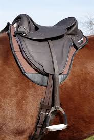 torsion treeless saddle. barefoot \u0027cheynne\u0027 treeless saddle torsion