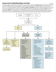 lung cancer mcmaster pathophysiology review classification of invasive lung cancer