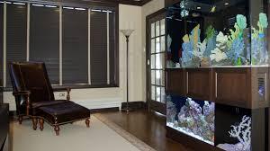 office aquariums. Aquarium Installations Big Or Small. Office Aquariums