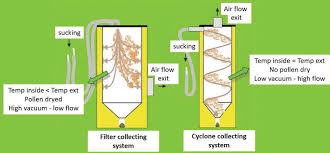 Artificial Pollination In Kiwifruit And Olive Trees Intechopen