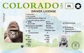 Spanish Manual Driver Colorado S In