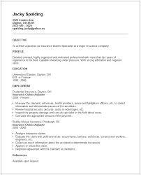 insurance sample resume sample great formats breathtaking claims adjuster  resume insurance resume example entry level insurance